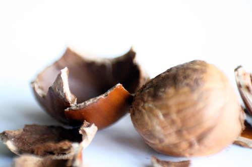Lip Balm – Hazelnut Espresso