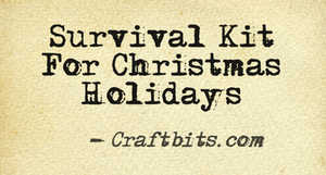 Survival Kit – Christmas Holidays