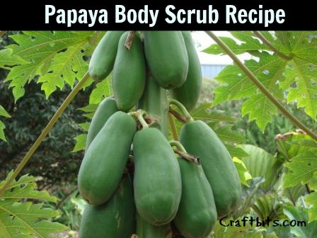 papaya-body-scrub-recipe