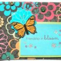 Cardmaking - Friendship In Bloom