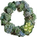 wreath-dried-hydragena