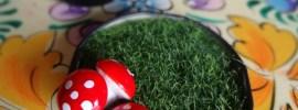 fairy-garden-mushroom-magnets
