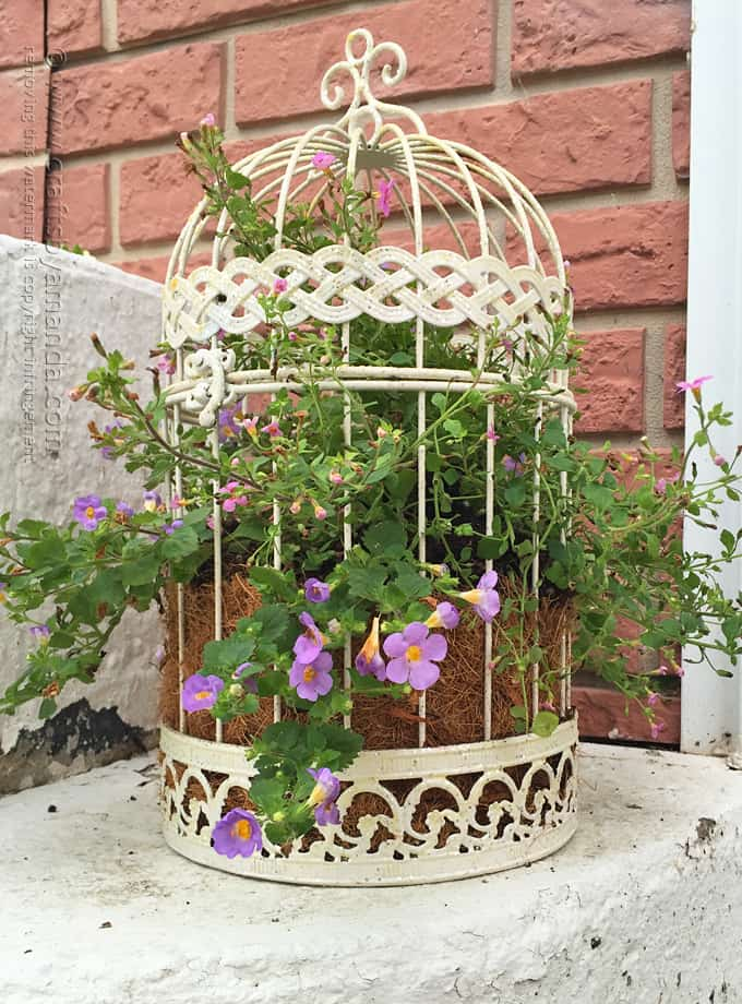 Birdcage flower planter a beautiful way to display your