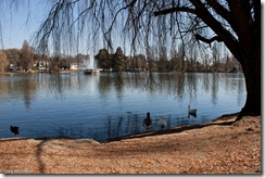 Photo of Zoo Lake