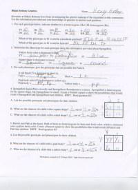 Spongebob Genetics Worksheet Answers Free Worksheets ...