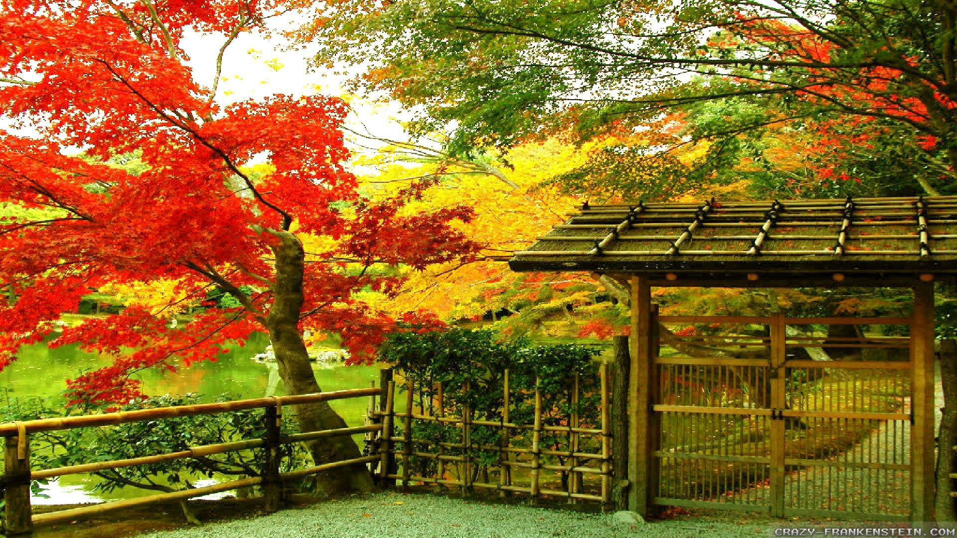 1920x1080 High Res Fall Wallpapers Autumn In Japan Wallpapers Seasonal Crazy Frankenstein