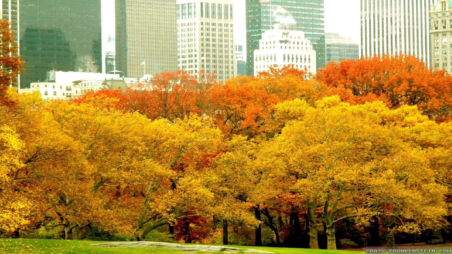 Fall In Central Park Wallpaper Autumn In New York Wallpapers Seasonal Crazy Frankenstein