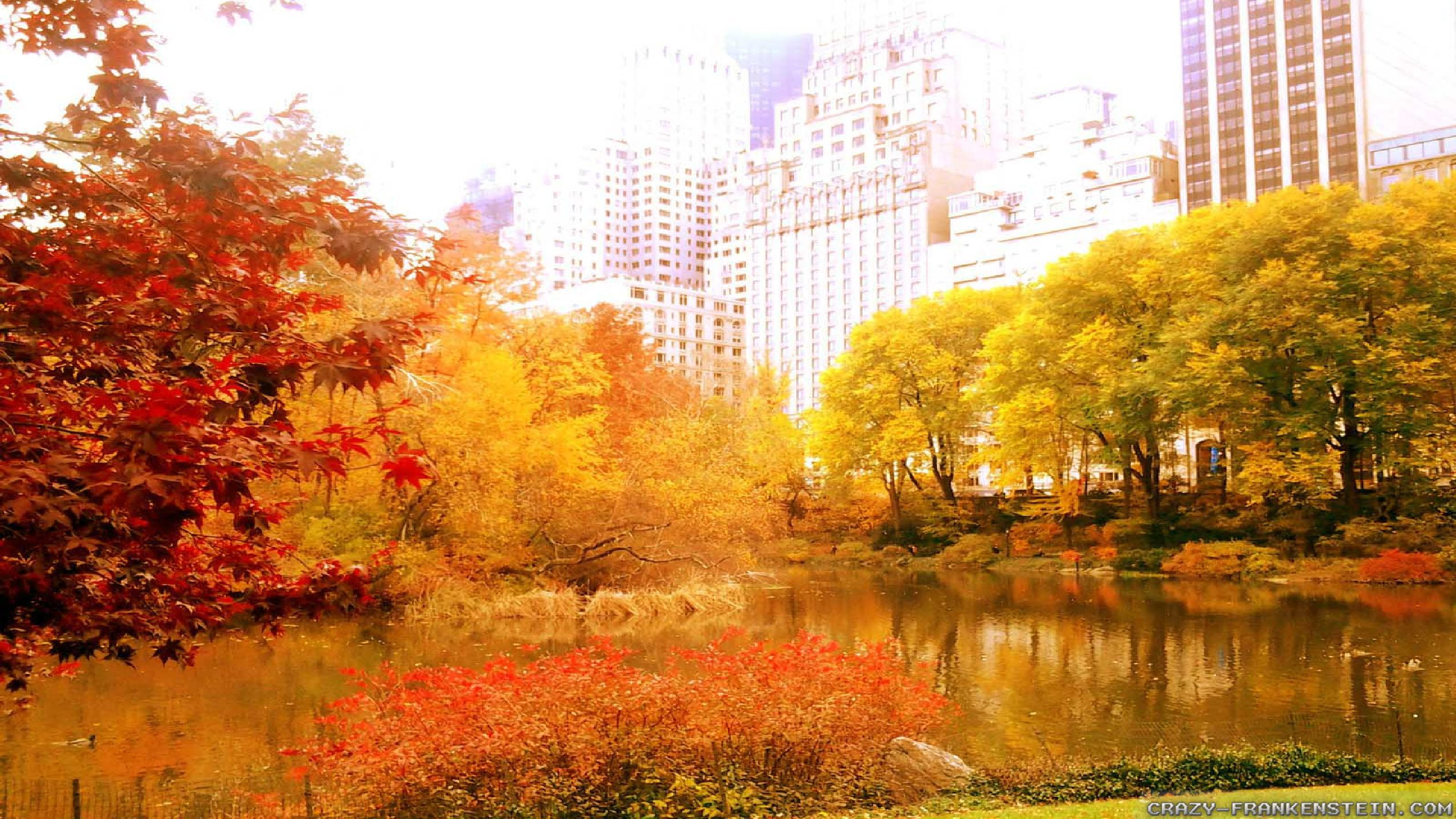 4k Central Park In The Fall Wallpaper Autumn In New York Wallpapers Seasonal Crazy Frankenstein