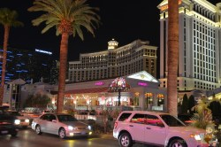 Superb Serendipity Vegas Crazy Yet Wise Serendipity Las Vegas Breakfast Serendipity Las Vegas Sundae