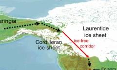 Beringia strait, Roblespepe, WikiCommons