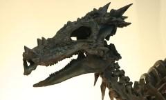 Dracorex at the Indianapolis Children's Museum