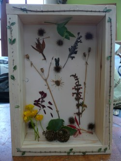 Fascinating Graduation How To Make A Shadow Box Military A Completed Shadow Box How To Make A Shadow Box Activities Carers How To Make A Shadow Box Example
