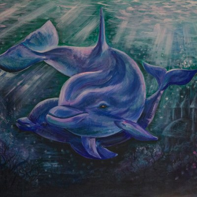 The Dolphin represents peace and harmony,  playfulness and joy, and co-operation.