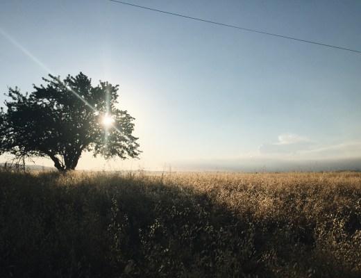california, esparto, photography, creativestay
