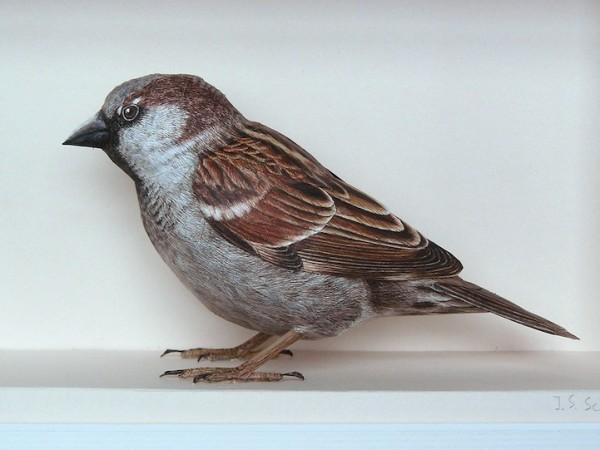 papercraftbirds05
