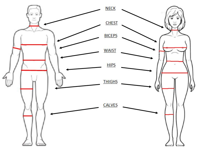 Body Measurements CRfitnessnet