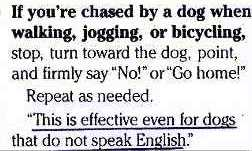 dogenglish