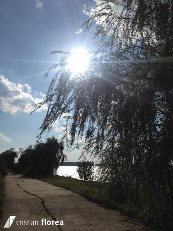 insula de pe lacul morii (4)