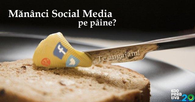 social-media-pe-paine2