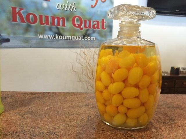 kumquat - corfu #greekexplorer 3