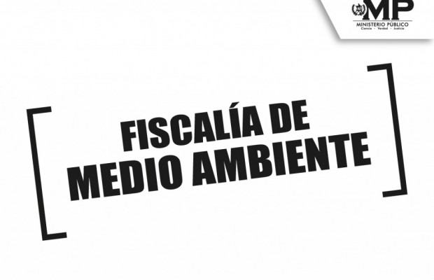 fiscalia-de-medio-ambiente-35-1-620x400.jpg