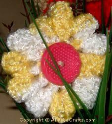 cro flower 2  0809
