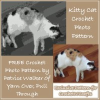 Kitty Cat Crochet Photo Pattern - By Patrice Walker