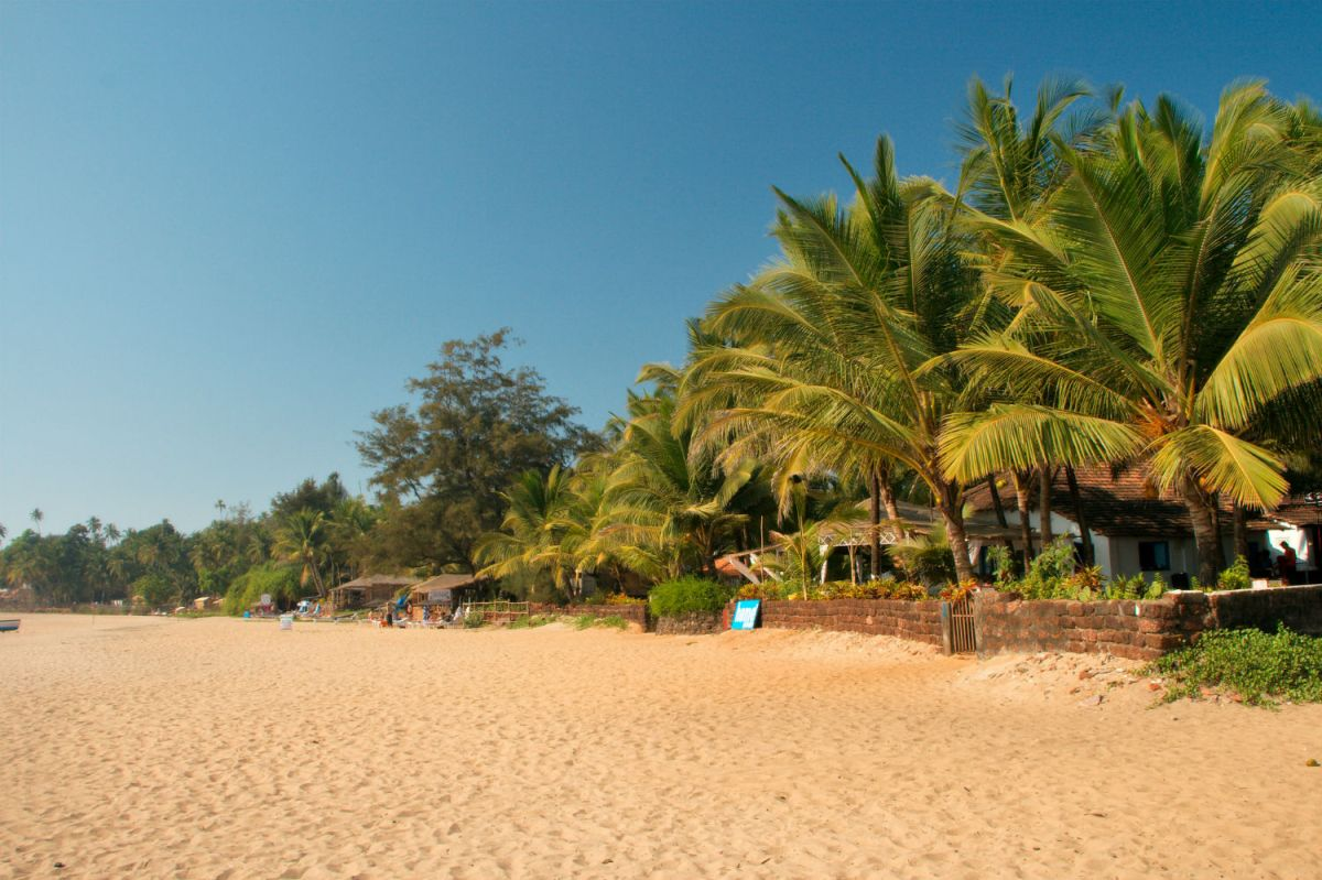 A Wellness Guide to South Goa