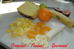 Biscuit caramel aux fruits exotiques - avril 2009 089 copie