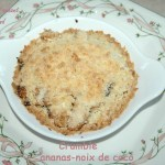 Crumble ananas-noix de coco - DSC_3389_11580