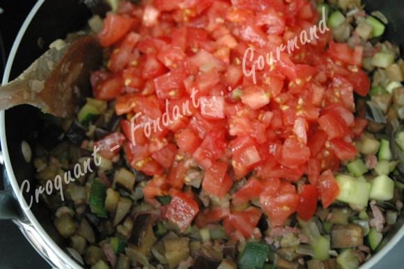 Bohémienne de légumes - DSC_9075_17578
