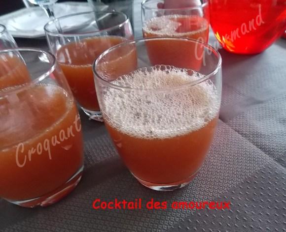 Cocktail des amoureux DSCN3812_23682