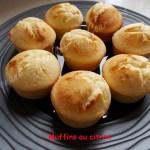 Muffins au citron DSCN5463_25519