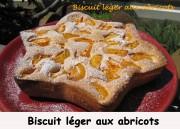 biscuit-leger-aux-abricots-index-img_5884_34675