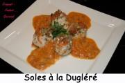 Filets de sole à la Dugléré Index - octobre 2009 127 copie