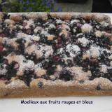 Moelleux aux fruits rouges -IMG_5298_32831