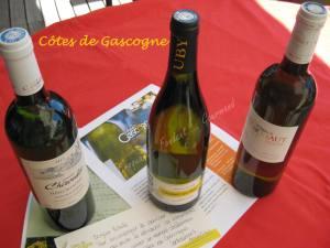Côtes de Gascogne IMG_6063_35260