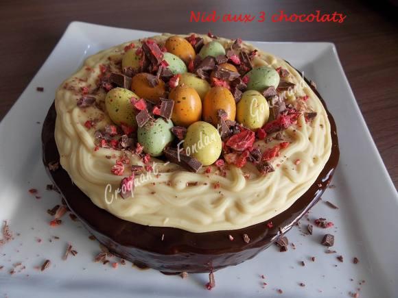 Nid aux 3 chocolats DSCN7399