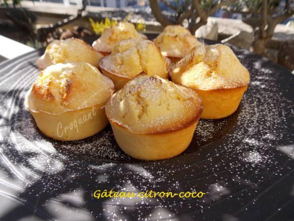 Gâteau citron-coco DSCN0515