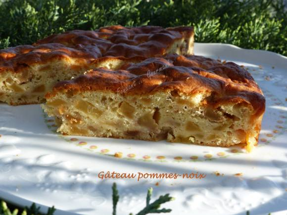 Gâteau pommes-noix P1000193