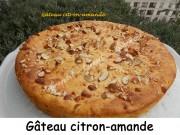 Gâteau citron-amande Index DSCN3124