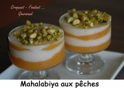 Mahalabiya Index -DSC_2356_10519