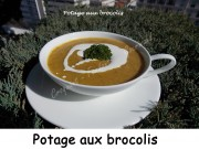 Potage aux brocolis Index DSCN3325