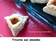 tricorne-aux-amandes-index-p1000377