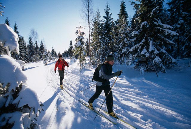 Crosscountry Skiing!
