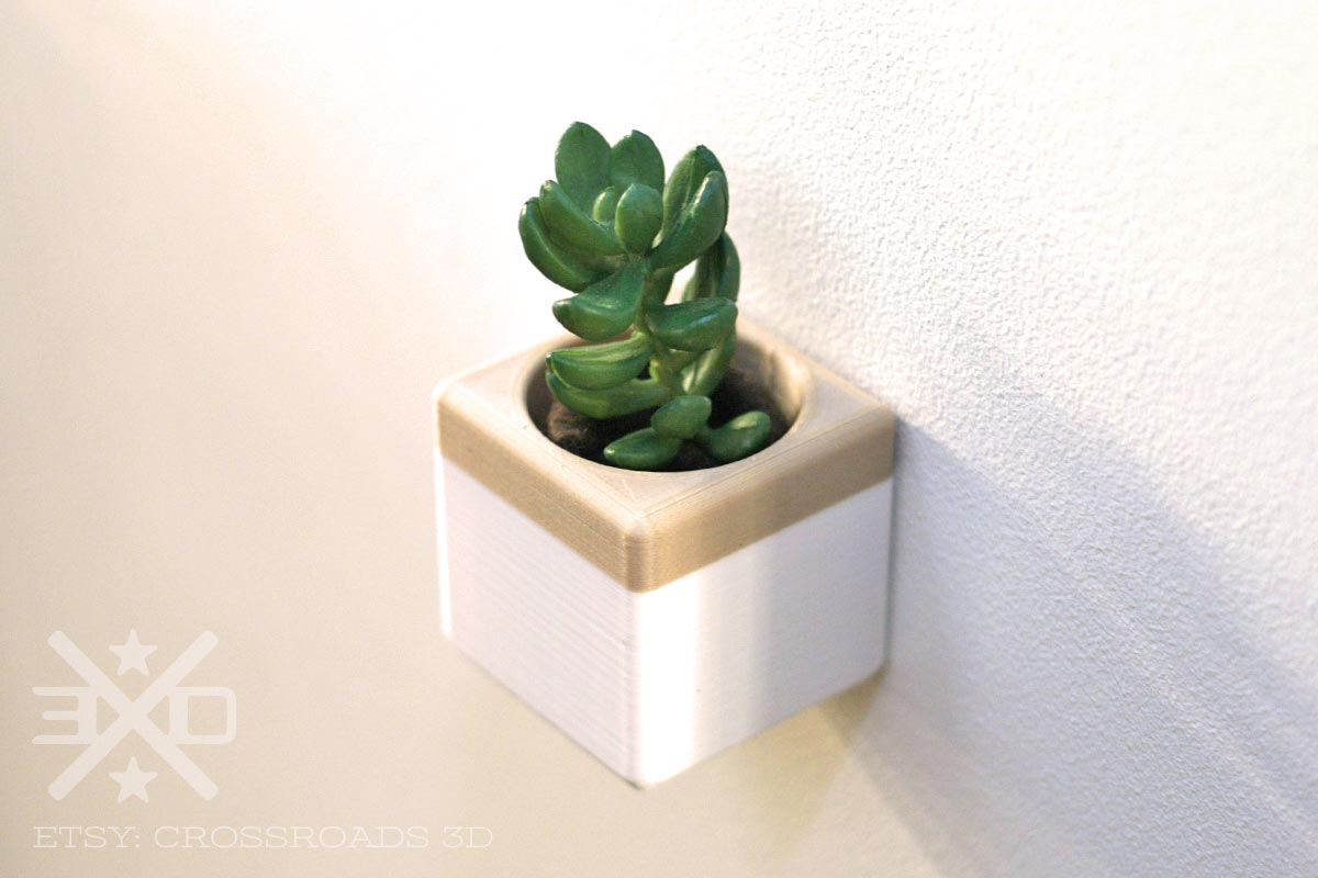 Air Plant Wall Holder Cube Wall Planter Air Plant Holder Set Of Two Crossroads 3d