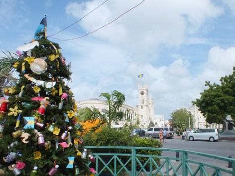 Xmas Trees Barbados 2