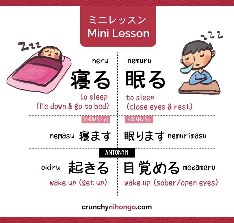 differentiate-japanese-sleep-verbs-neru-nemuru