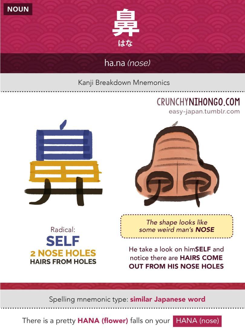 n5-vocabulary-hana-nose