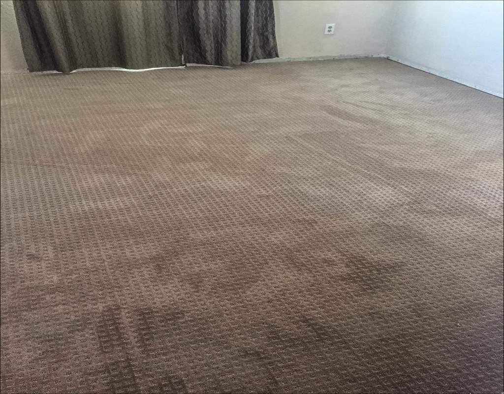 How Much Does Mohawk Smartstrand Carpet Cost Cruzcarpetscom